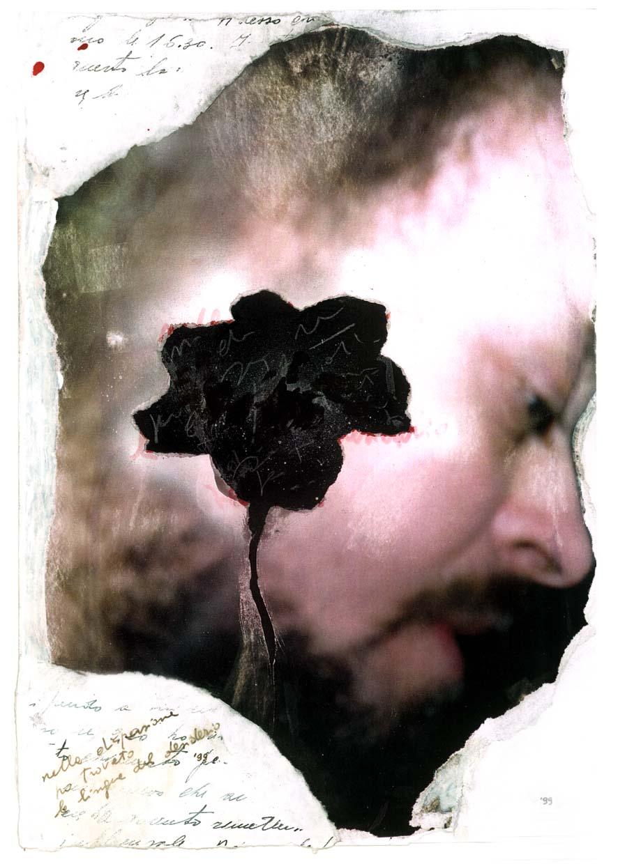 La rosa rossa nel bianco come arte pericolosa (attraversando la Sicilia)